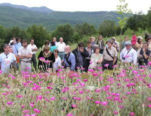 European Botanic Gardens Consortium Home Page